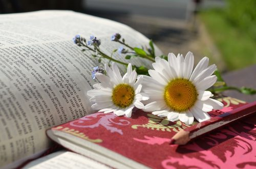 Bible with daisies